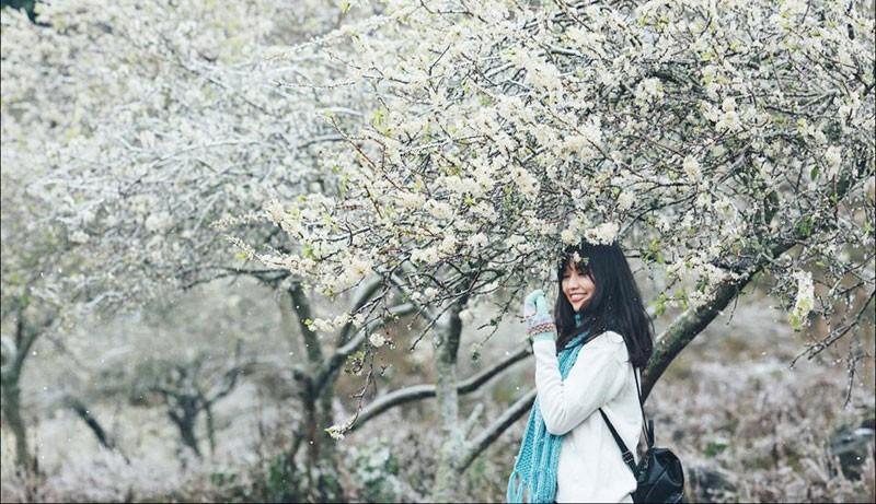 mùa đông mộc châu