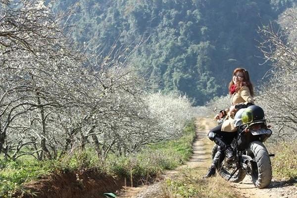 du lịch mộc châu
